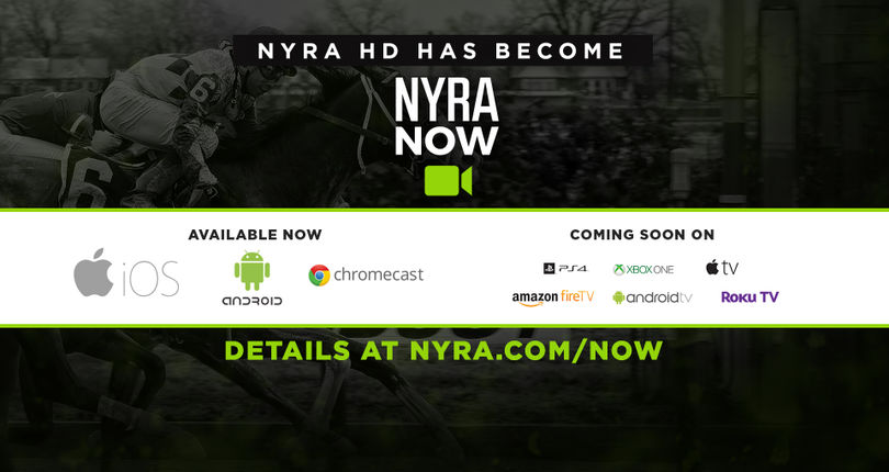 NYRA Now: An In-Depth Look