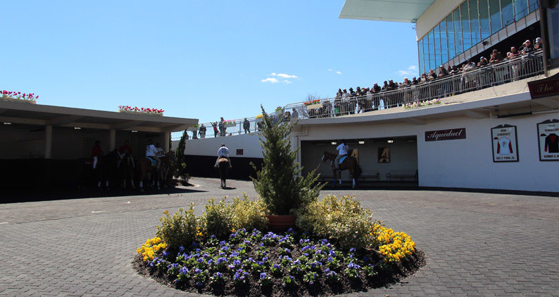 Eleven trainers amass more than $34,000 in bonus money as part of NYRA Starter Loyalty Program