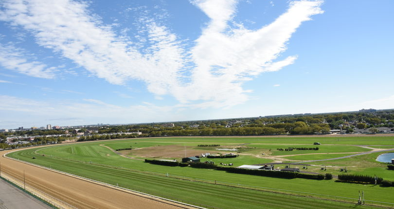 Aqueduct Fall Meet to unveil renovated inner turf course