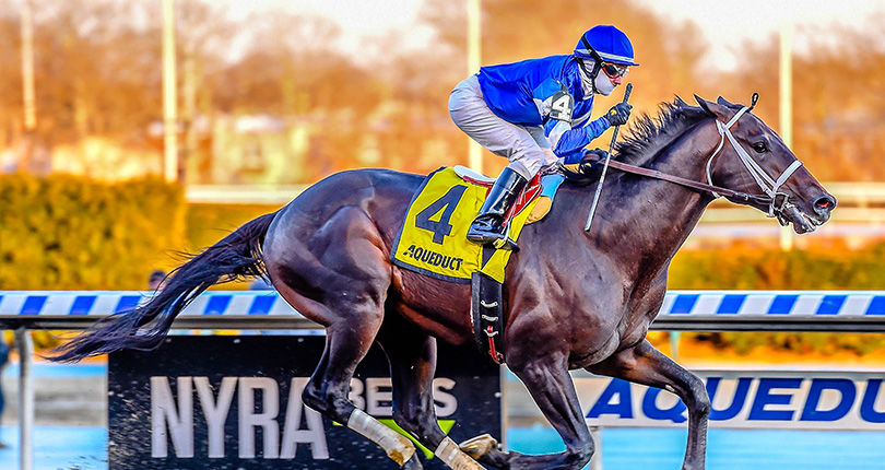 Kentucky Derby hopeful Avery Island much the best in G3 Withers