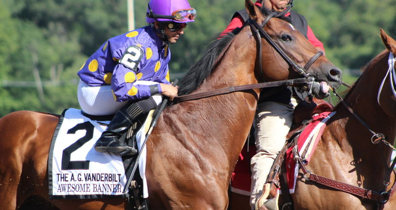Awesome Banner returns to New York in G3 Bold Ruler