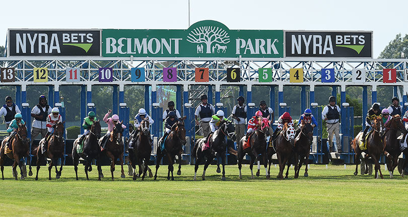 Albertrani, Godolphin send two for Belmont Turf Sprint Invitational