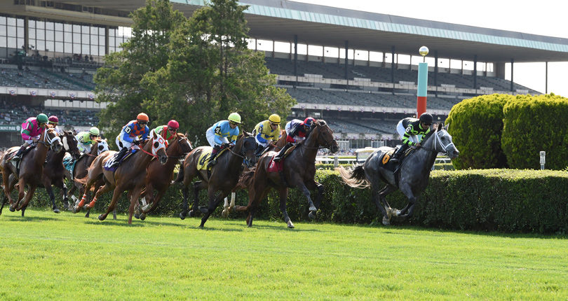 New York-breds take center stage on Big Apple Showcase Day
