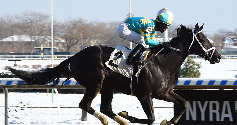 Jimmy Winkfield, Rego Park on tap this weekend at Aqueduct
