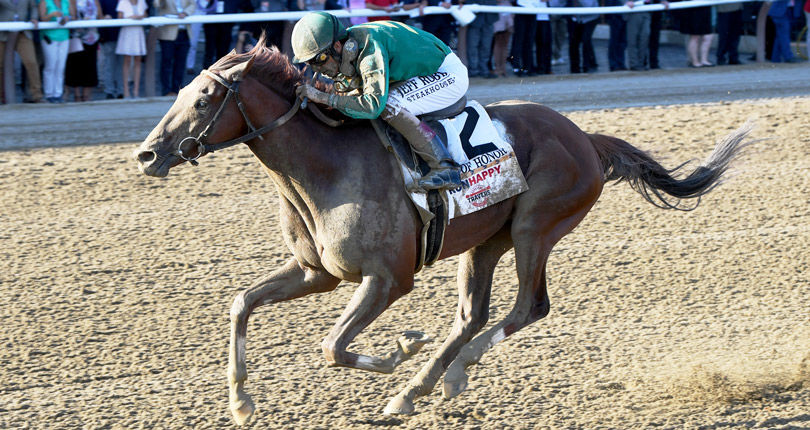 Code of Honor breezes for G1 Jockey Club Gold Cup; Plainsman on point for G2 Kelso