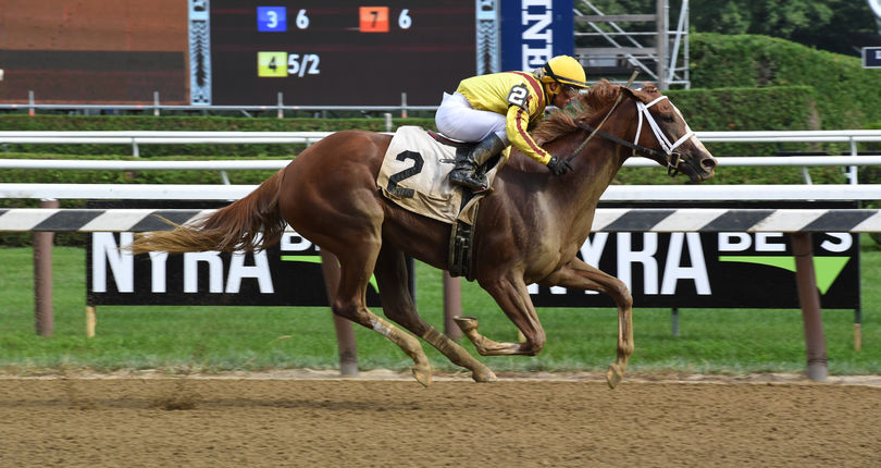 Dream Tree, Dream Pauline put unbeaten records on line in Sunday's G2 Prioress