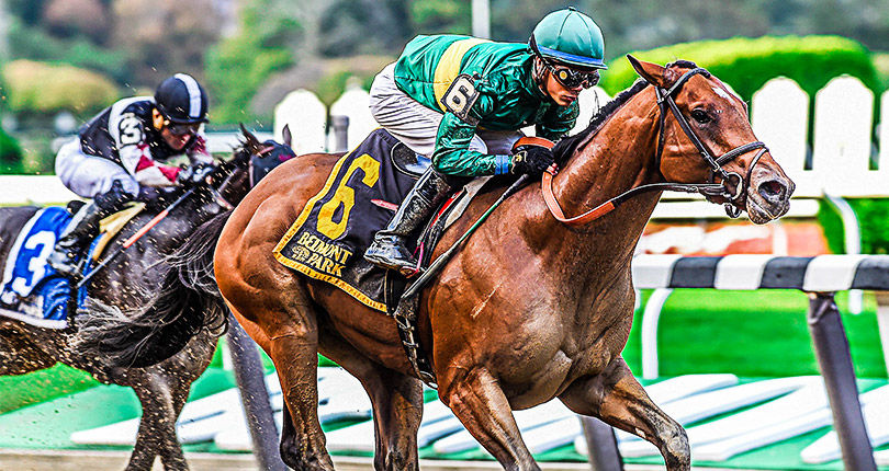 Engage looks to take off in G3 Bay Shore