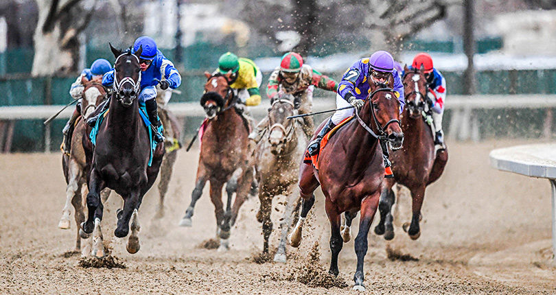 Aqueduct Racetrack Notes 4.05.18