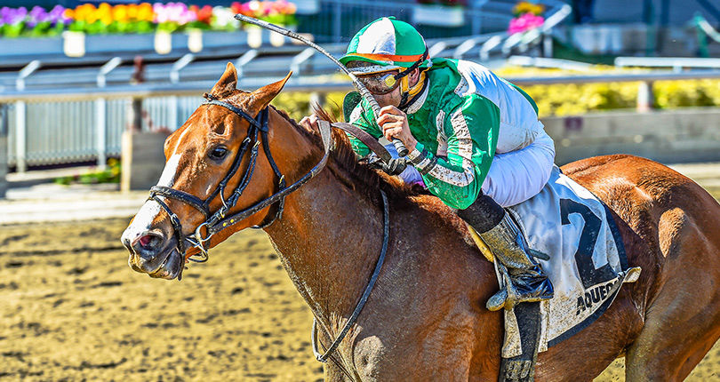 Aqueduct Racetrack Notes 3.4.18