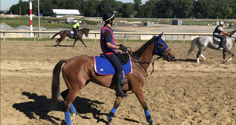 Japanese-bred Jodie breezes in preparation for G1 Belmont Oaks
