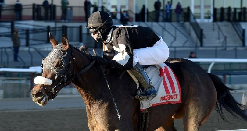 Laobanonaprayer goes for three straight stakes wins in $100K Franklin Square