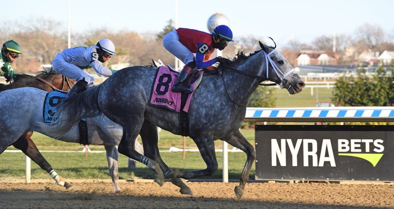 NYRA Thanksgiving Racing Festival highlights Aqueduct fall meet