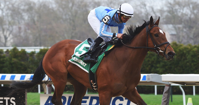 Aqueduct TimeformUS Race Analysis | NYRA