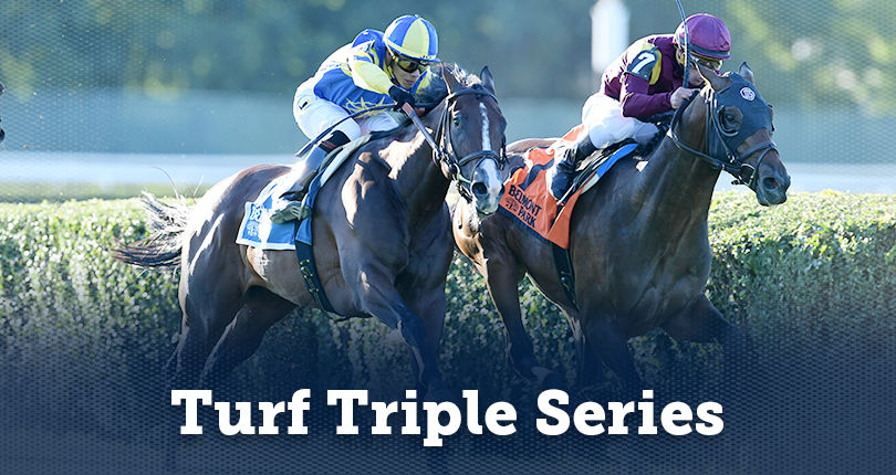 NYRA establishes $5.25 million Turf Triple Series featuring the Turf Trinity and Turf Tiara for 3-ye