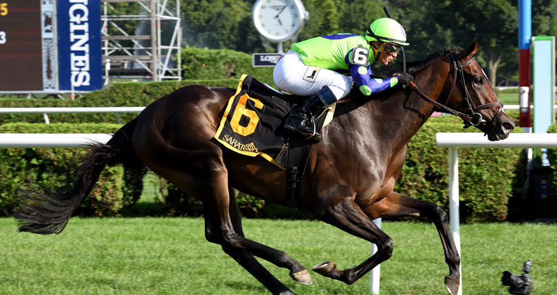 Rushing Fall earns millionaire status in G2 Lake Placid win