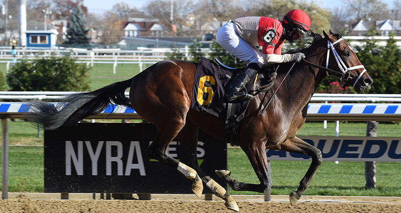 Strike Power on target for G1 Vanderbilt; Bourbon War to try turf