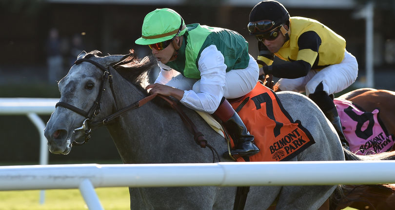 Significant Form uses strong kick to win G3 Miss Grillo | NYRA