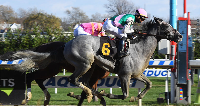 Tacitus possible to return in Oaklawn Handicap (G2)