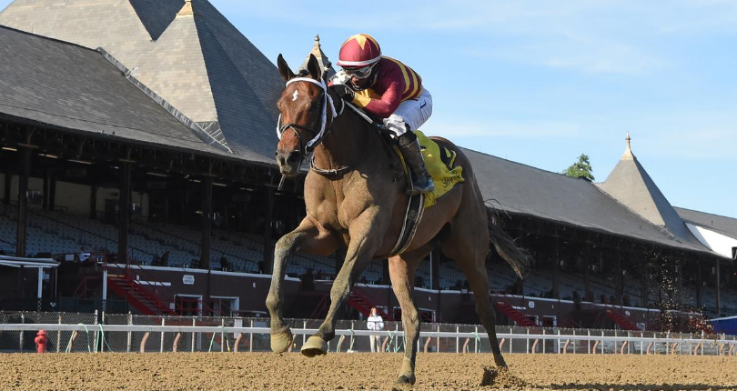 Thoughtfully passes graded stakes test in G2 Adirondack