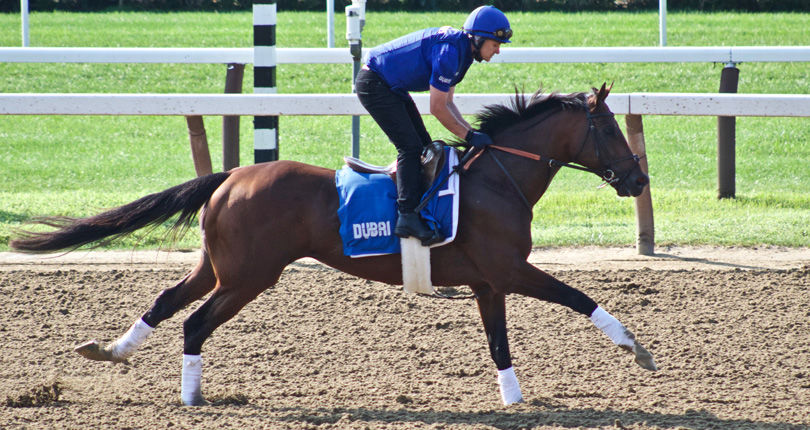 Thunder Snow scratched from G1 Whitney