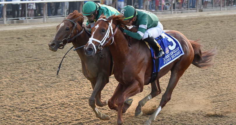 Vino Rosso in good order following G1 Jockey Club Gold Cup; No plans to appeal disqualification