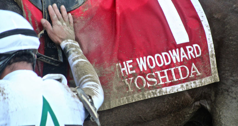 NYRA sets all-sources handle record for Woodward Day