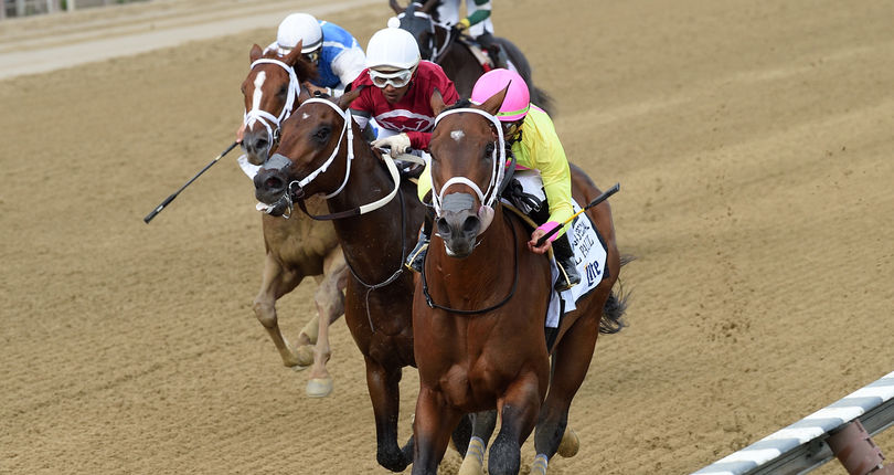 Call Paul overcomes stretch-drive bump to win G2 Saratoga Special
