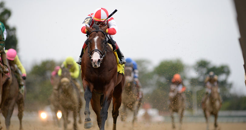 New York connections abound in Breeders' Cup pre-entries
