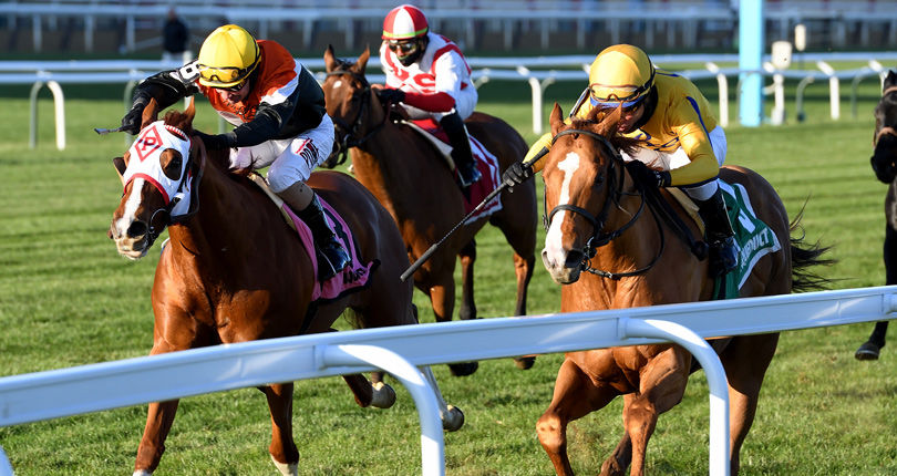 Casse in good spirits after stakes wins; Sir Winston may make return on turf