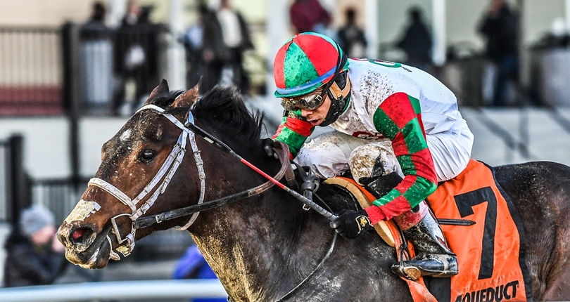 Free Drop Billy, Firenze Fire top field of nine Kentucky Derby hopefuls in G3 Gotham