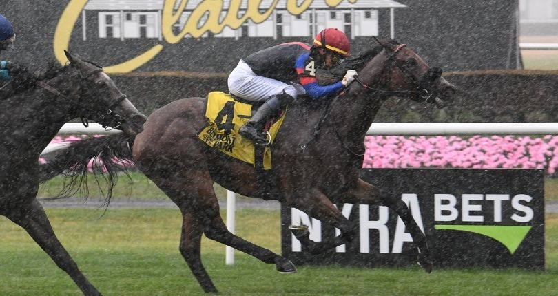 Full field set for filly and mare turf contest in Saturday's $80K Floral Park