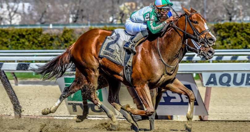 New York-bred millionaire Highway Star kicks off 2018 campaign in Heavenly Prize