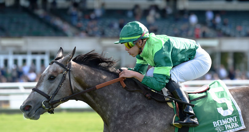 Homerique finds route to victory in G3 Beaugay
