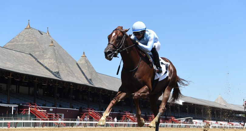 Cazadero headlines loaded field for Saratoga Special (G2)