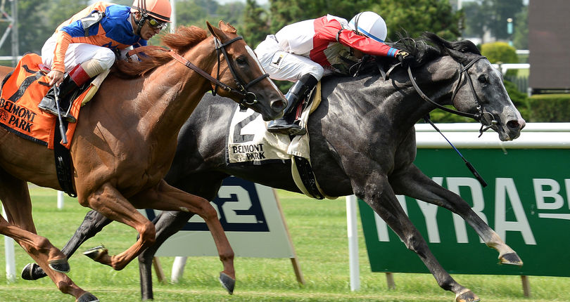 Diverse field set to compete in Sunday's G3 Athenia