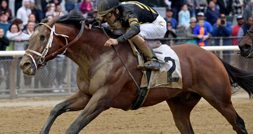 Patch is back, joins stablemate Outplay in Sunday's Alydar