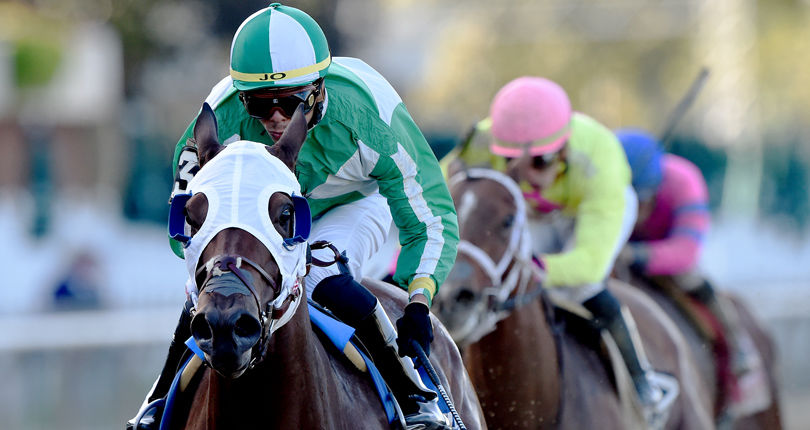 Pauseforthecause endeavors for third straight win in Sunday's Garland of Roses