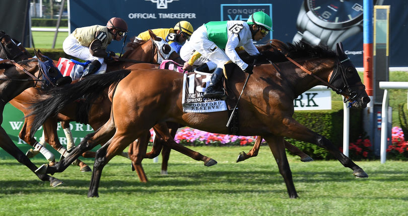 Spring Quality springs upset in G1 Woodford Reserve Manhattan