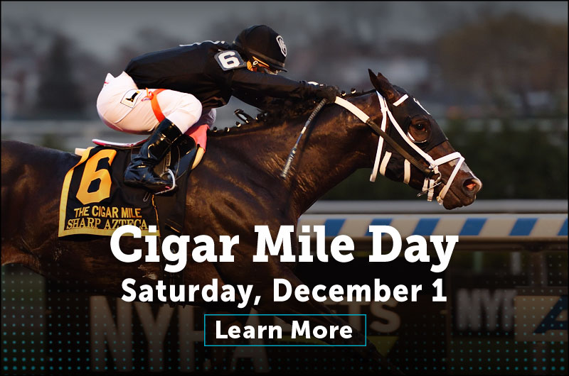 Cigar Mile Day