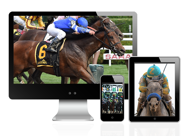 NYRA Account Multi-Platforms