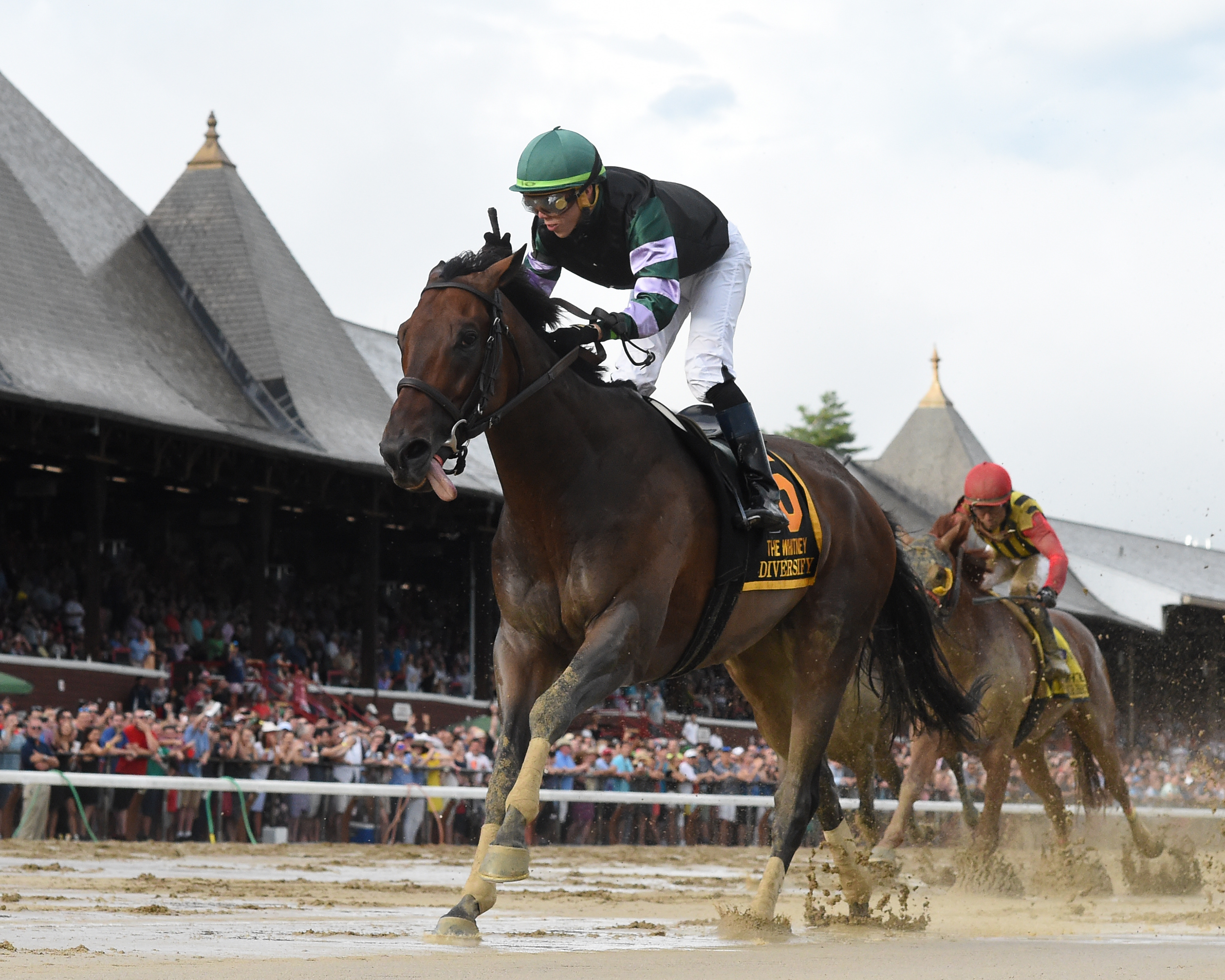 Nominations Released For G1 Jockey Club Gold Cup G1 Joe