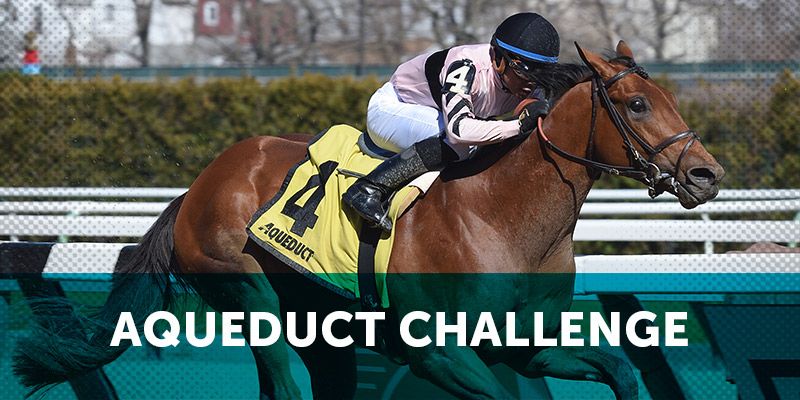 Handicapping Challenges Nyra