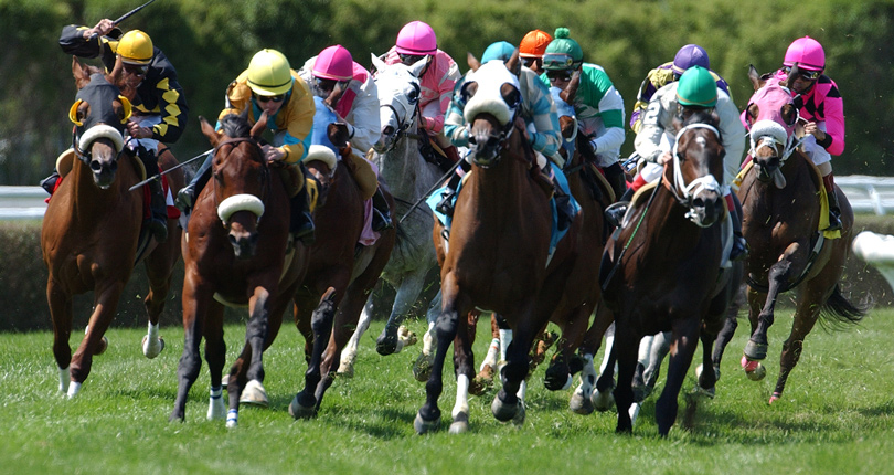 Nyra Releases Belmont Fall Meet Stakes Schedule